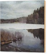 The Lake In My Little Village Wood Print by Gun Legler