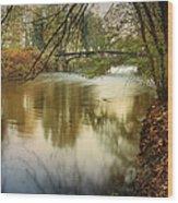 The Lambro River Wood Print