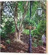 The Lamp Post Wood Print
