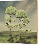 The Land Of The Lollipop Trees Wood Print