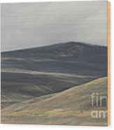The Land Scape Wood Print