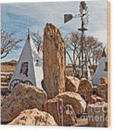 The Largest Petrified Wood Wood Print
