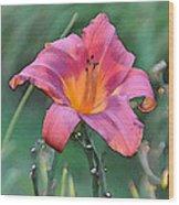 The Last Flower Wood Print