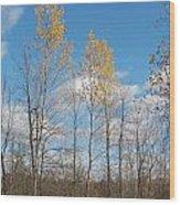 The Last Leaves Wood Print