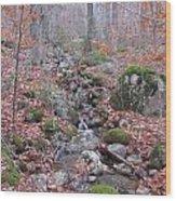 The Last Of Fall Wood Print