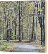 The Leaves Are Falling Wood Print