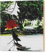 The Leaves Will Soon Start To Fall  Wood Print