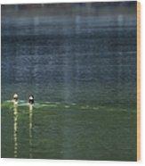 The Leisurely Getaway Wood Print