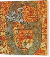The Letter G With Lichens Wood Print