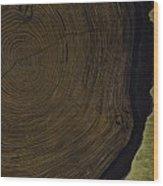 The Life Of Harry Hartshorne Wood Print