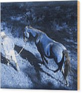 The Light And Shadows Of A Man And His Horse Wood Print