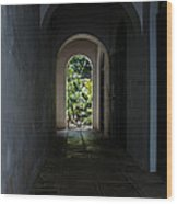 The Light At The End Of The Tunnel  Wood Print