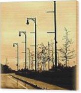 The Light Path Wood Print