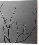 The Lightning Tree Wood Print