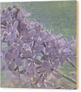 The Lilac Wood Print