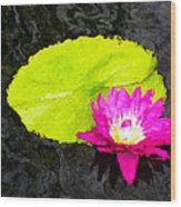 The Lily Pad And Flower... Wood Print