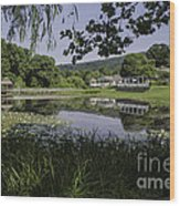 The Lily Pond Wood Print