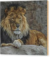 The Lion Digital Art Wood Print