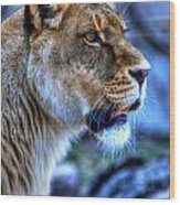 The Lioness Alert Wood Print
