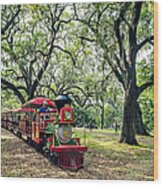 The Little Engine That Could - City Park New Orleans Wood Print