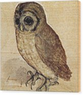 The Little Owl 1508 Wood Print