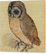 The Little Owl Wood Print