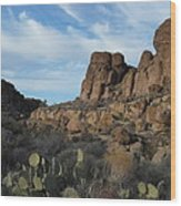 The Living Desert Of Arizona Wood Print
