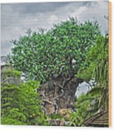 The Living Tree Walt Disney World Wood Print