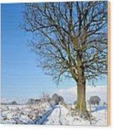 The Loaner Wood Print by Dave Woodbridge