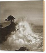 The Lone Cypress Midway Point Pebble Beach  Lewis Josselyn  Circa 1916  Wood Print
