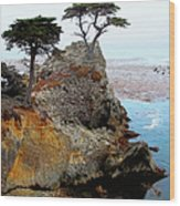 The Lone Cypress - Pebble Beach Wood Print by Glenn McCarthy Art and Photography