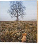 The Lone Oak Wood Print