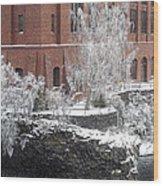 The Lone Sentinel - Spokane Washington Wood Print