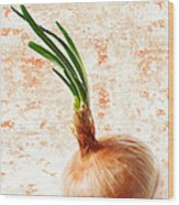 The Lonely Onion Wood Print