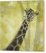 The Long Morning Stretch Wood Print