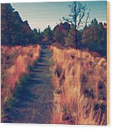 The Long Path Wood Print
