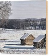 The Long Winter Wood Print by Olivier Le Queinec