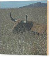 The Longhorn Wood Print
