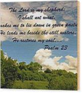 The Lord Is My Shepard Wood Print