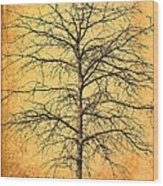 The Lord Jesus Is The Tree Of Life Wood Print