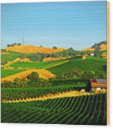 The Los Carneros District Wood Print