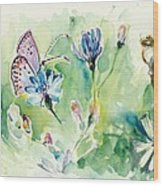 The Love Between Butterfly And Chicory Wood Print