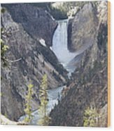 The Lower Falls Of Yellowstone River Wood Print