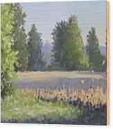 The Lower Field Wood Print