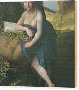 The Magdalene, C.1518-19 Oil On Canvas Wood Print