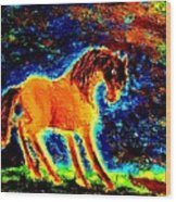 The Magic Horse Will Talk To You But Will You Understand  Wood Print