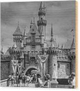 The Magic Kingdom Wood Print