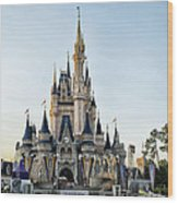 The Magic Kingdom Castle On A Beautiful Summer Day Wood Print