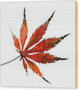The Magical Colors Of Fall Wood Print