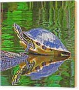 The Magnificence Of Turtle Wood Print